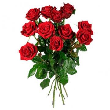 antal rosor innebörd